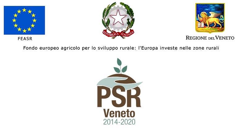 Progetto PVSENSING